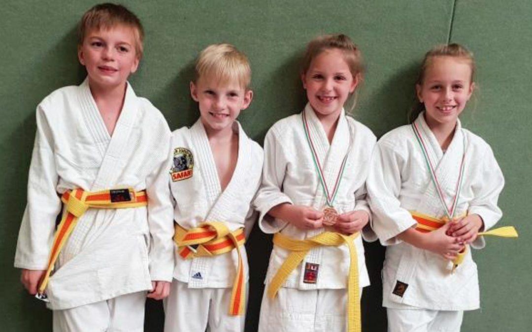 Judo-Anfänger sehr erfolgreich