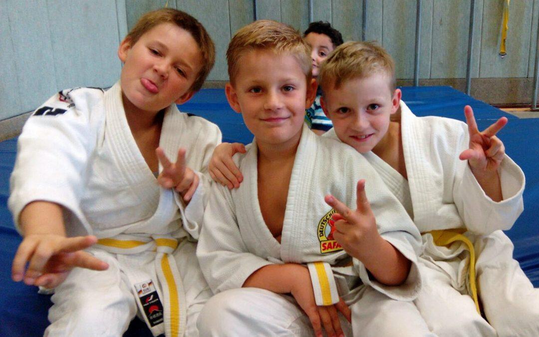 Judo Kreismeister und 9 Qualifizierte