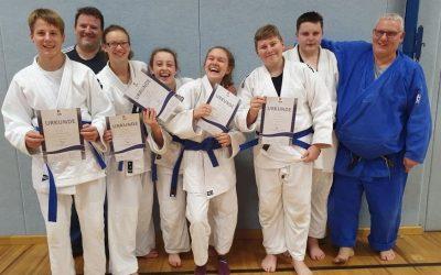 Braun und Blau für Judokas